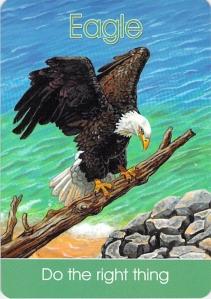 eagle -- Children's Spirit Animal Cards