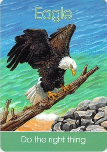 eagle -- Children's Spirit Animal Cards