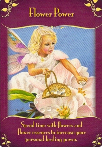 flower power -- Magical Messages from the Fairies