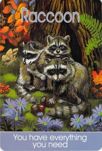 Raccoon -- Children's Spirit Animal Cards