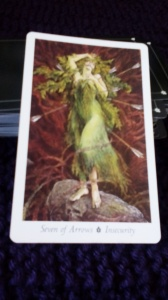 Seven of Arrows, Wildwood Tarot