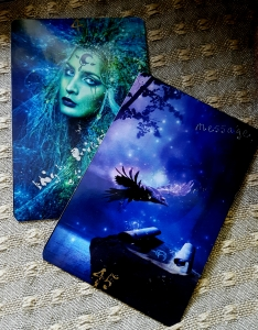 The High Priestess of Water, and Message, from Colette Baron-Reid's Wisdom of the House of Night deck.