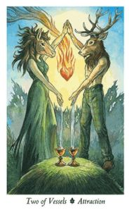 Two of Vessels from the Wildwood Tarot.
